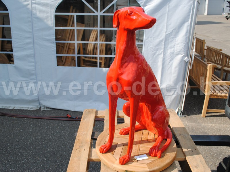 Windhond rood